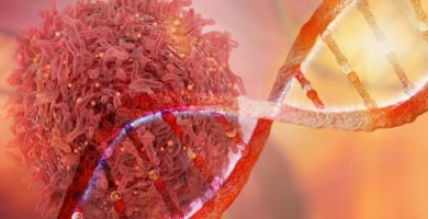 que estudia la inmunologia